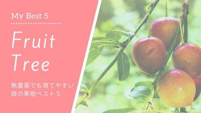 無農薬でも育てやすい果樹、庭植えにおすすめの果樹