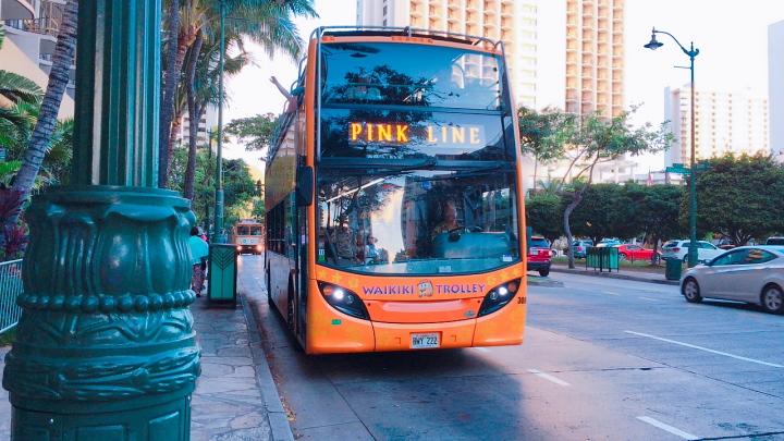 ワイキキ:ピンクラインバス