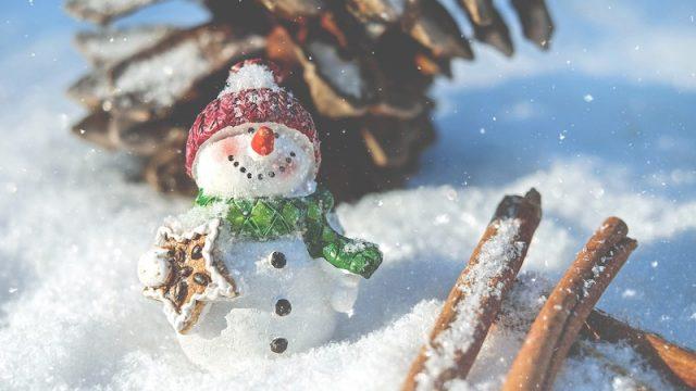 雪の中でアイスを作れるのか実験してみた2019年冬